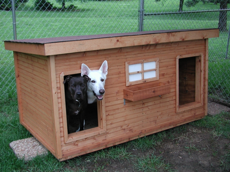 Puppy Palace On Pinterest Dog Houses Dog House Plans