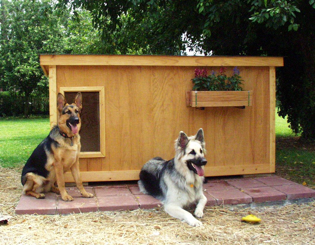 German Shepherd Insulated Dog House Plans