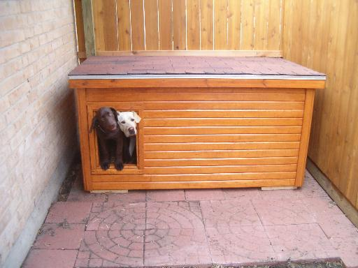 Stunning Free Dog House Plans For Multiple Dogs Contemporary ...